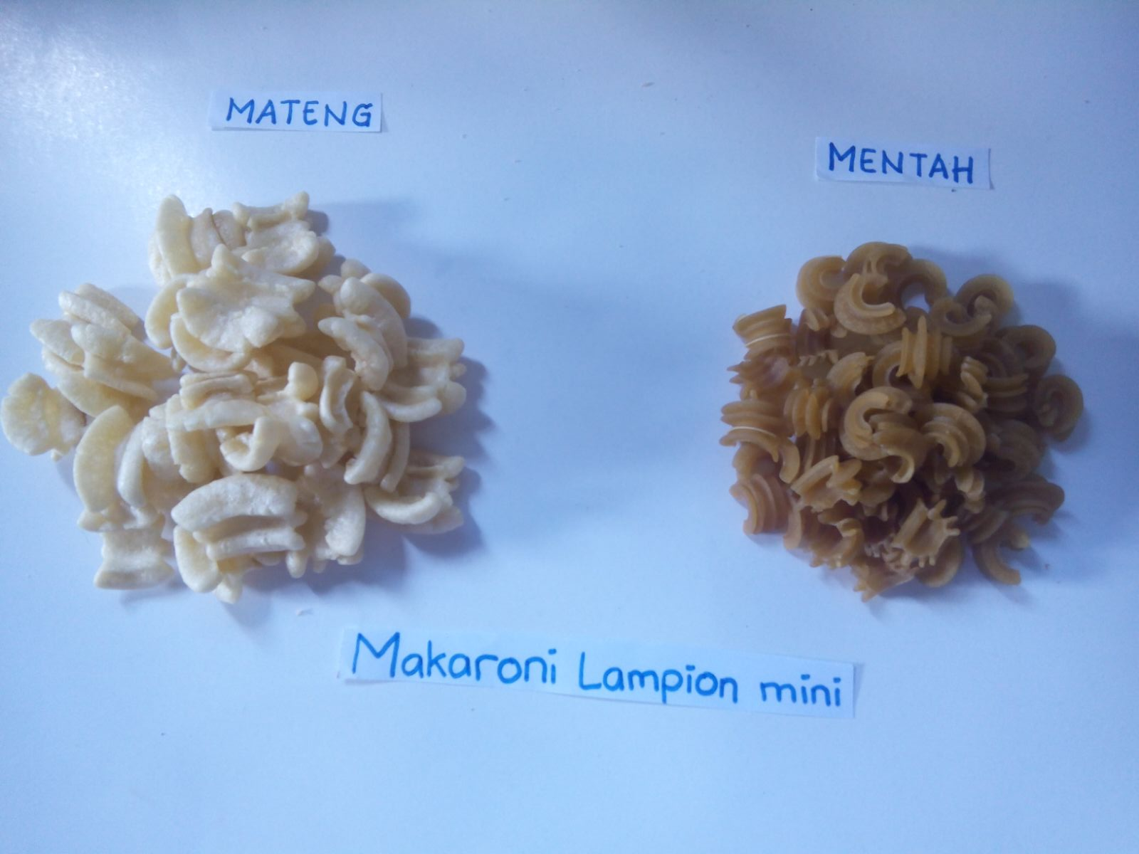Makaroni Lampion Mini